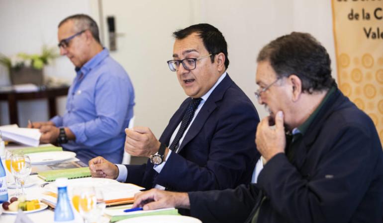 VALENCIA PLAZA: Las agresiones a profesionales sanitarios, un problema a resolver en la administración